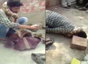 Python wraps round snake charmer's neck and strangles him during show