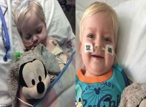Boy of two, hit by cancer stuns his family by waking up from coma after they agreed to turn off his life support and now he has been sent home healthy