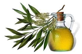 Dilute Tea Tree Oil