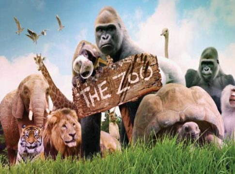 Why Zoos Are Important and Zoo Facts for Tourism