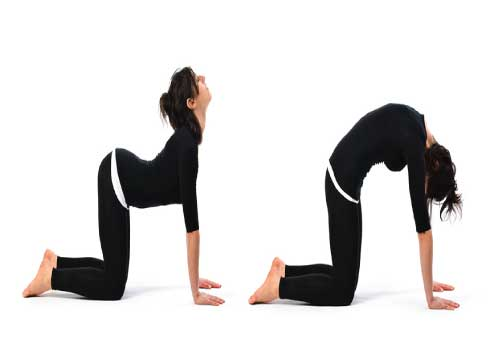 increase your height with these 10 stretches and exercises