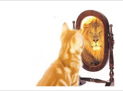 See Why Self Awareness Essay Is An Essay We All Should Write About