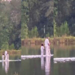 Kanye West walks on water with his kids